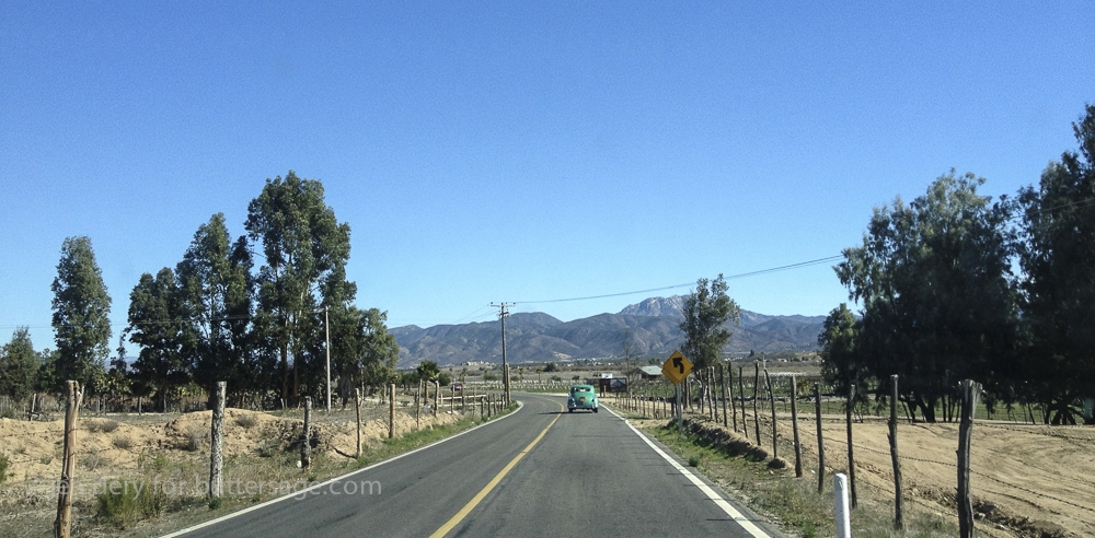valle-gualdalupe-food-trip-16