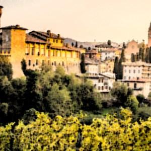 Balsamic Vinegars of Modena