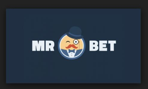 How Does Mr Bet Work