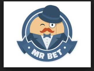 how to play Mr Bet