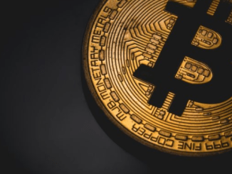PayPal Director Says One Bitcoin Could Exceed $1 Million in 7 -10 Years