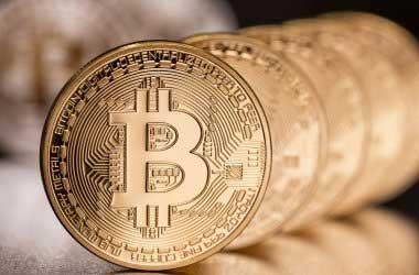 Bitcoin Analyst