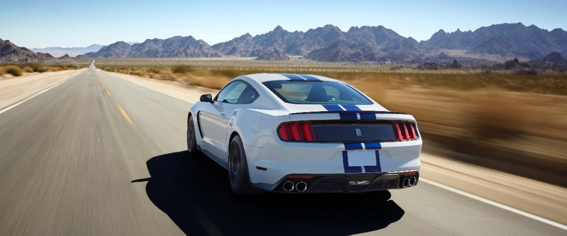 Mustang GT350 - Mountain Road