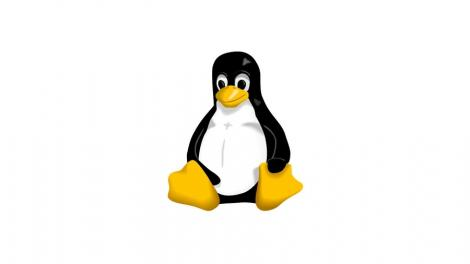 Linux 4.0: little fanfare for a tiny new release