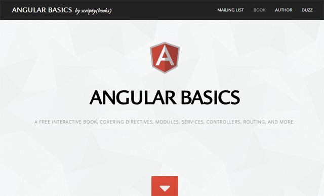 Angular Basics by ScriptyBooks