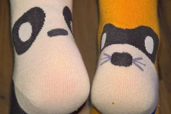 Ich geh auf Tieren…[lustige Socken (4,5 von 5)]