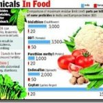 Indian veggies, fruits remain highly toxic–Times of India