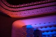 Sergio-Leone-Saal mit Eröffnungsbeleuchtung