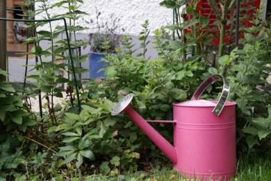 Giesskanne im Garten (Bildassistent: Landschaft)