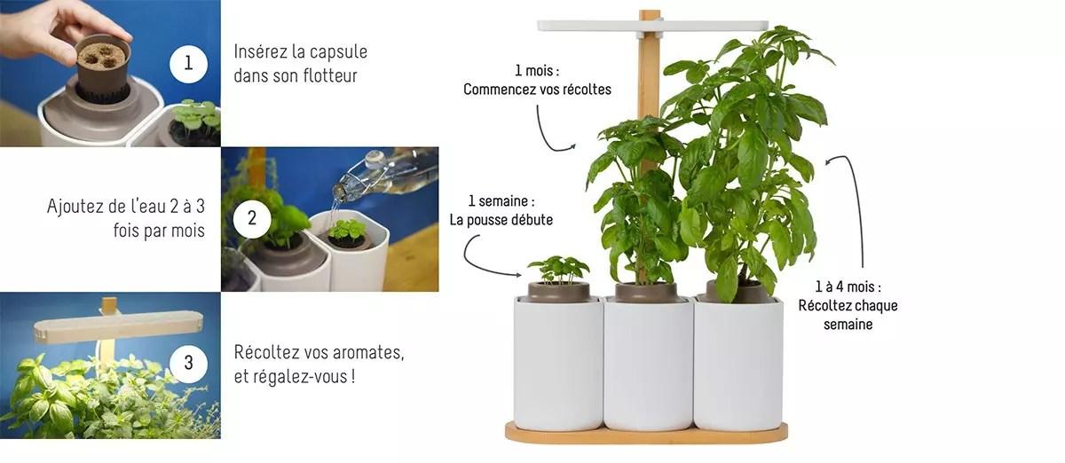 Parche de vegetales de interior Smart Lilo