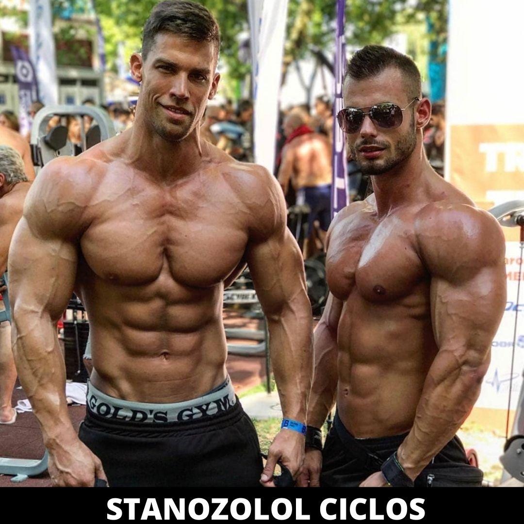 estanozolol ciclos