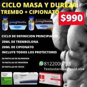 Ciclo de Masa y Dureza Trembolona y Cipionato con Protectores
