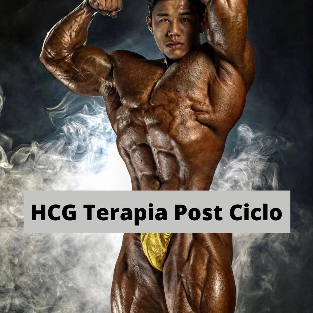 HCG terapia- post ciclo