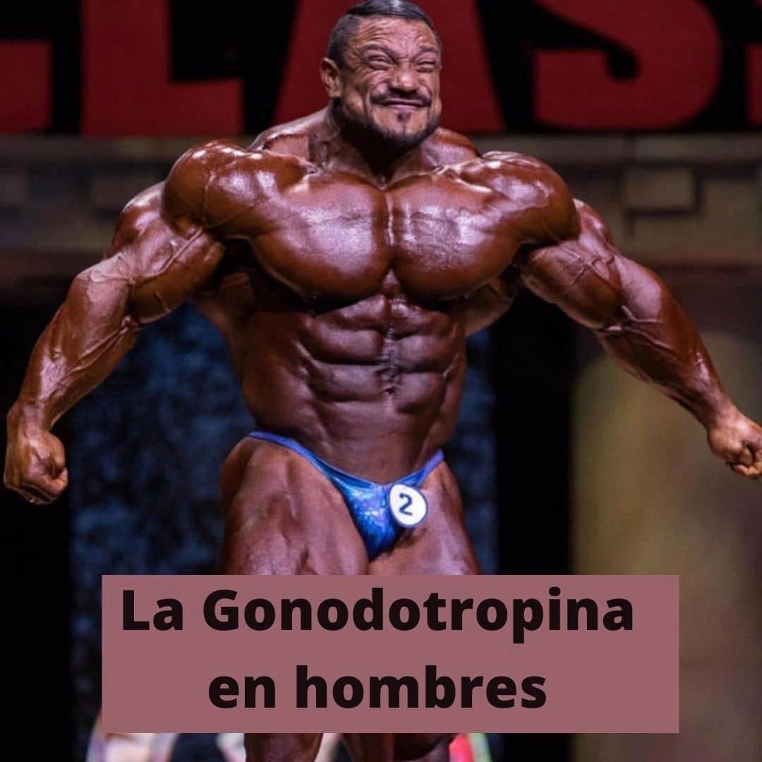 La Gonodotropina en hombres hgh