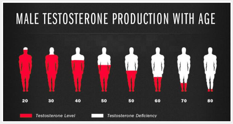 Testosterone Hormone Decline with age