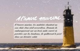 Ancre marine : produit marins (bateau, pêche etc.)