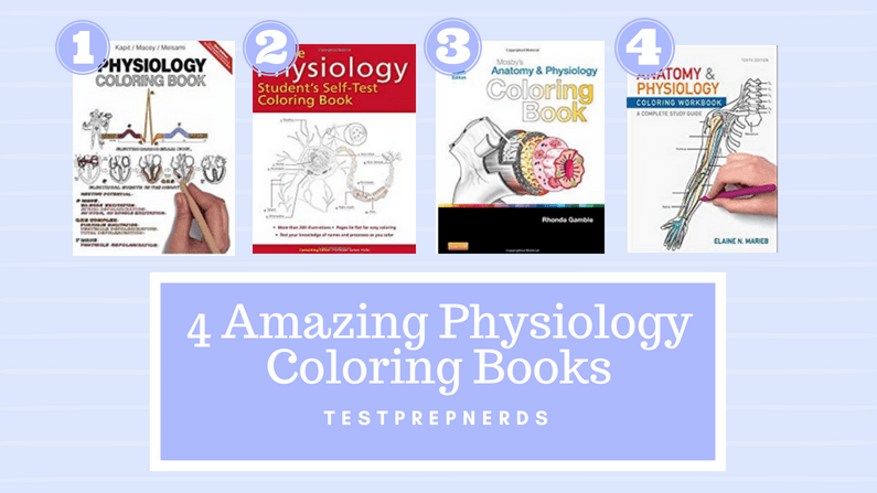 Physiology Coloring Books