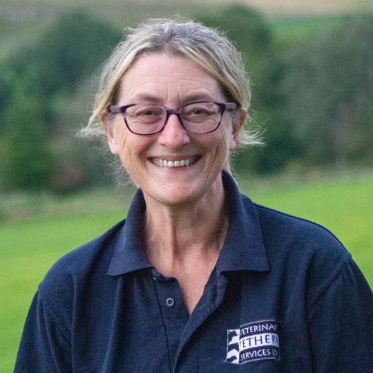 Sue Hannon