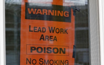 The Government and Lead Paint