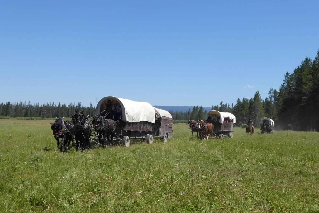 The chuck wagon followed by the two other wagons make up the wagon train for the week
