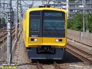 P5020944