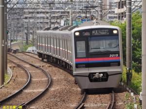 P5041054