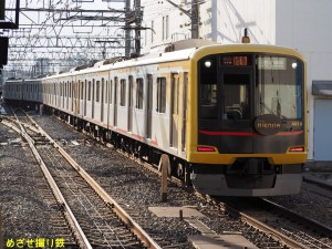 P8060012