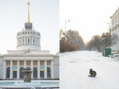 Winter_Love_Story_Kyiv_cat_and_star