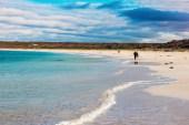 Australia_deLUX-9490
