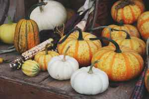 white and orange pumpkins on brown wooden table