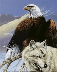 picture of eagle and wolf