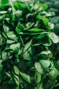 spinach lowers PAD risk