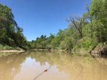 Harmon Creek 2017, from David D, 3