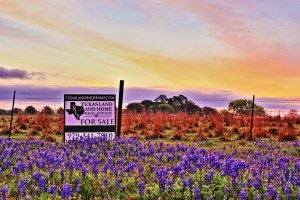 Texas Real Estate Agent   Texas Land and Home Real Estate