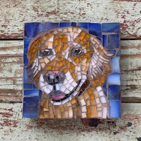 DeniseMosaics-Pet Portraits Dog Display Gallery 11