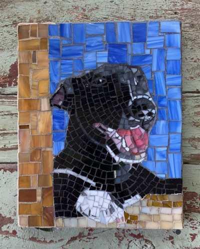 DeniseMosaics-Pet Portraits Dog Display Gallery 9