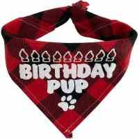 Texas Pet Co Dog Bandana Birthday Pup Neck Fold