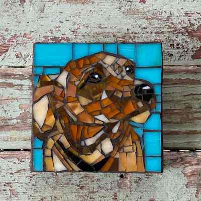 DeniseMosaics-Pet Portraits Dog Texas Pet Co Gallery - Paul Salibe 2DeniseMosaics-Pet Portraits Dog Texas Pet Co Gallery - Paul Salibe 2