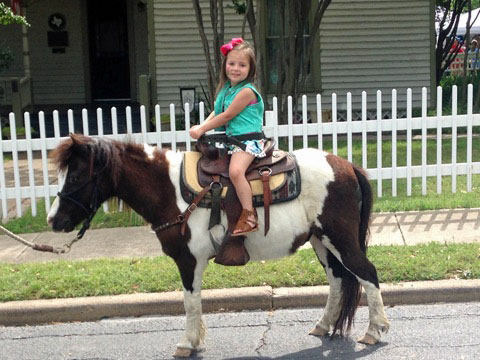 Texas Pony Rides Pony Rides For Parties And Events