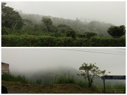 Misty scenery on the way down from the volcano.