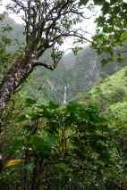 VIew of Hanakapi'ai Falls as we began approaching it