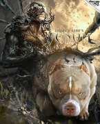 ", POCKET BULLY PUPPIES | LOUIS V LINE""S VENOM X MUSCLETONE'S REMI, Venomline | Texas Size Bullies"