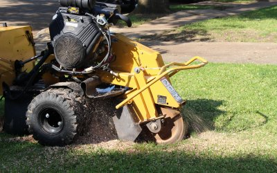What is Stump Grinding?