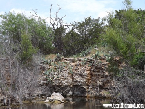 Quarry Wall 1