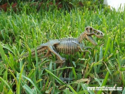 Small tyrannosaur sculpture