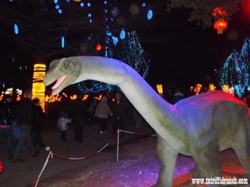 Chinese Lantern Festival dinosaurs