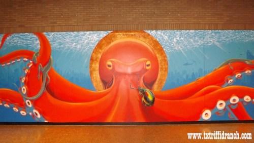 Oztopus mural
