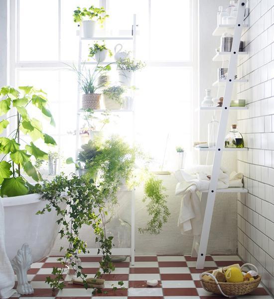 Ανοιξιάτικη Διακόσμηση με λουλούδια και φυτά2
