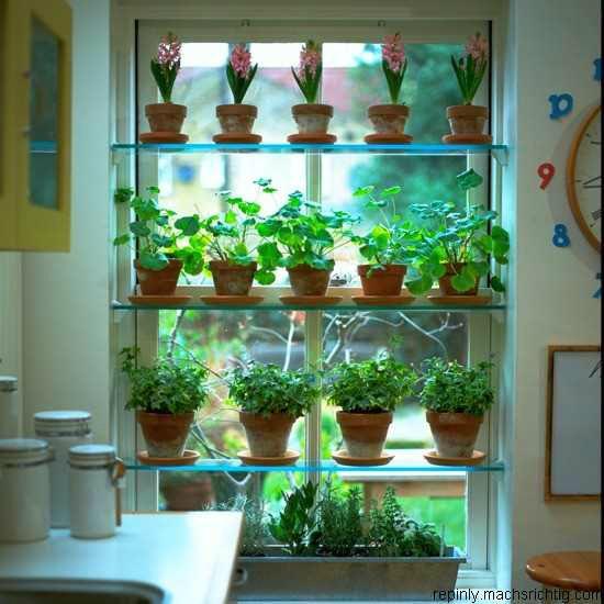 Πώς να διακοσμήσετε την κουζίνα σας με βότανα15