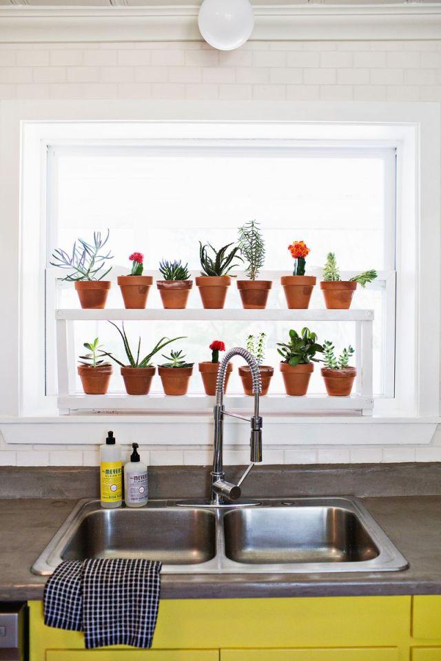 DIY Ιδέες Βότανο κήπων Παραθύρων για την κουζίνα σας9